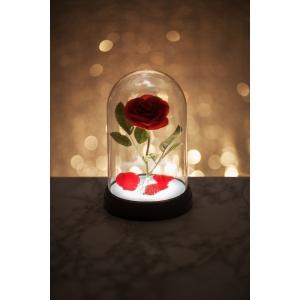 Princess Enchanted Rose Light