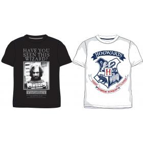 Harry Potter boys t-shirt