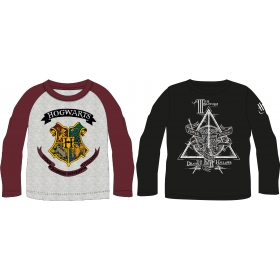 Harry Potter long sleeve shirt